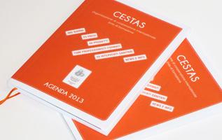 agenda, diary, personal organizer, 2013, grafica, impaginazione, ong, ngo, onlus, cri graphics