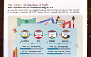 infografica; infographic; disabilità; rivista disabilità; disabile; titolo di studio; cri graphics