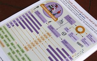 infografica; infographic; disabilità; rivista disabilità; disabile; cri graphics